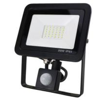 RA FLAC20BPIR Floodlight LED 20W Black